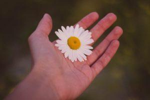 Hoe geef ik een goede massage - LOTUS Massageschool