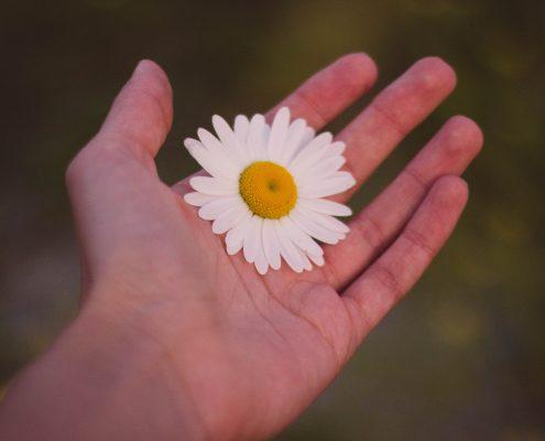 Handmassage bij dementie werkt - LOTUS Massageschool